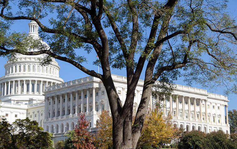fedweek.com | talk of buyout amount increase stirs life in senate